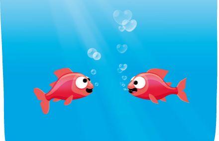 poissons-amoureux