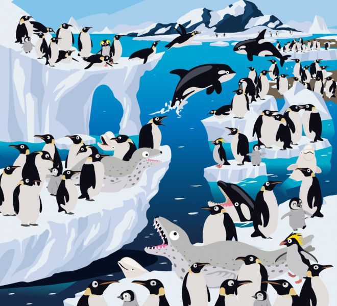 illus14-antarctique-DEFHD