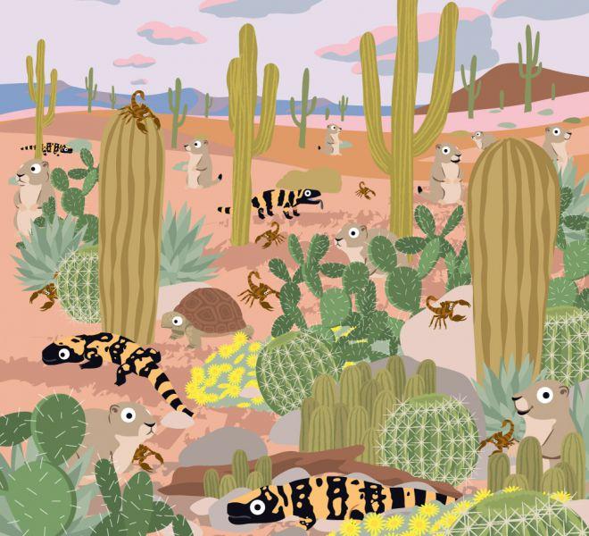illus23-desert-de-sonora-DEFHD